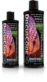 DiscusCode - Corals Fish and Beyond