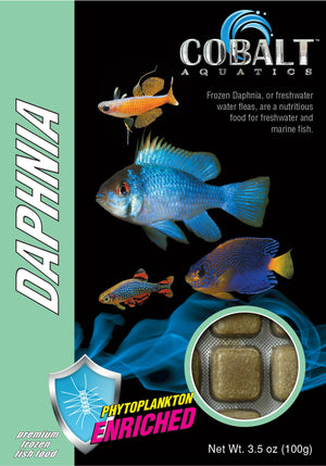 Cobalt Aquatics Daphnia Cubes - Corals Fish and Beyond