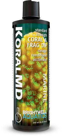 Koral MD Standard Strength Coral & Frag Dip Cleaner Conditioner Acclimator - Corals Fish and Beyond