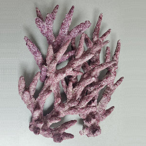 Real Reef Rock Branch 35lbs - Corals Fish and Beyond