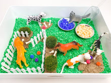 Load image into Gallery viewer, Pets Sensory Bin