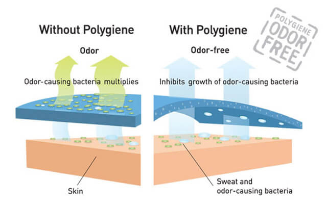 Polygiene Technology Infographic