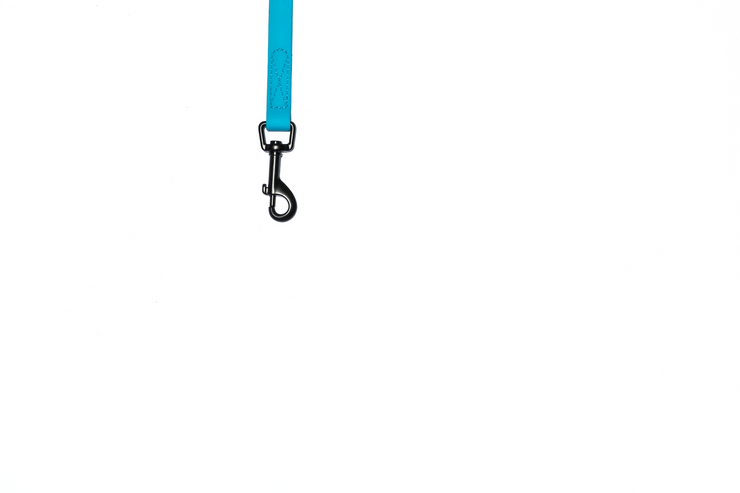 SKY BLUE WATERPROOF LEASH