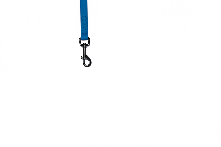 BLUE WATERPROOF LEASH
