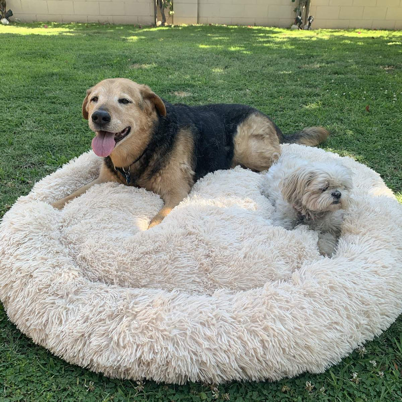 Anti Anxiety Calming Dog Bed Soothing Comfy Ultra Soft Bed