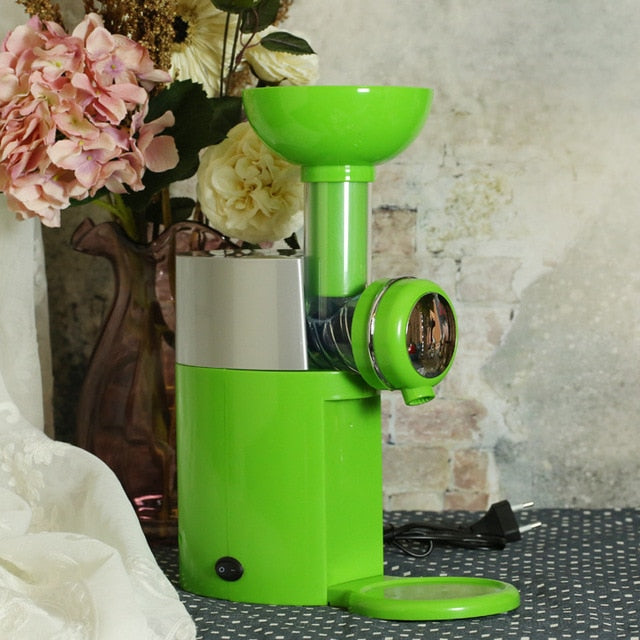 Frozen Fruit Ice Cream Maker Homemade Soft Serve Dessert Machine