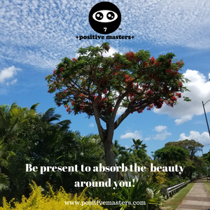 Be Present to Absorb the Beauty Around You!