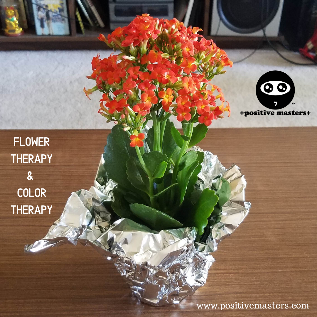Flower Therapy & Color Therapy!