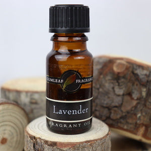 Buckley and Phillip Gumleaf fragrance oil Lavender