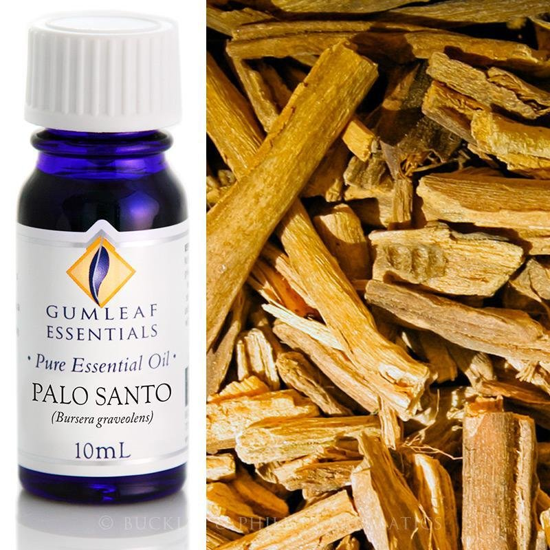 Pure Palo Santo Oil- Buckley & Phillps 10ml