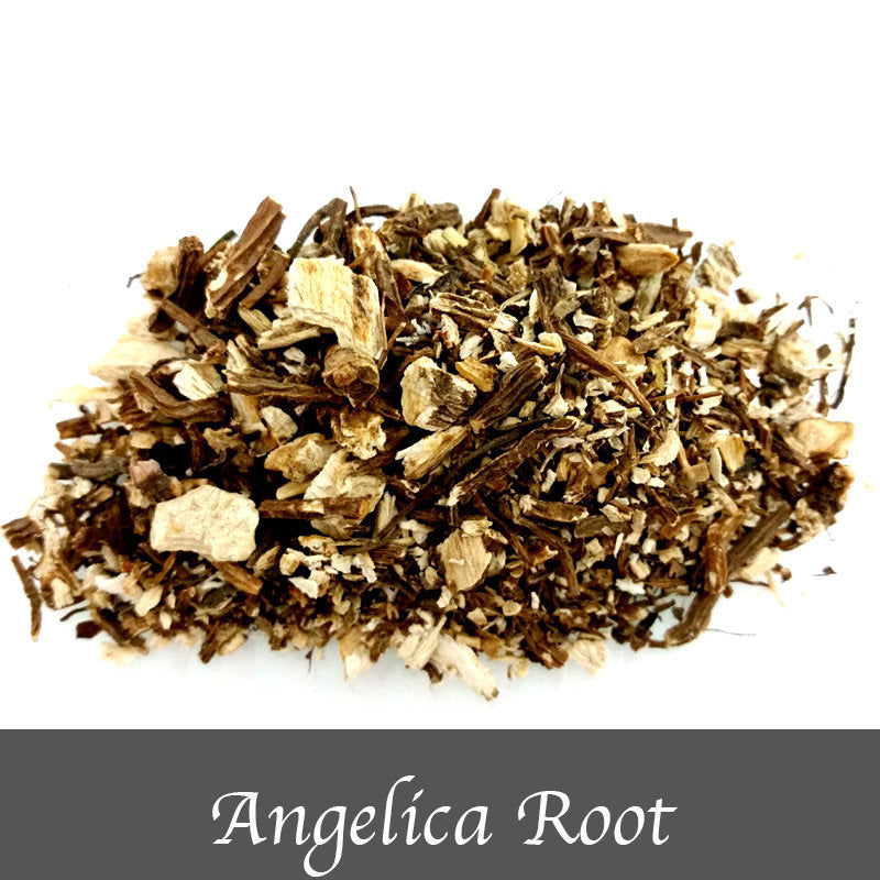 Angelica Root  15g