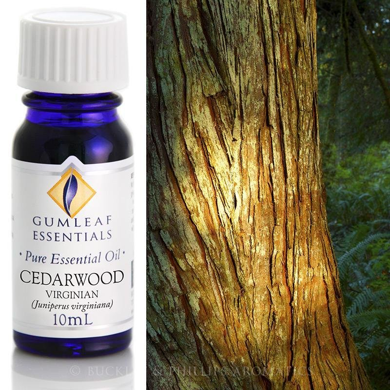 Buckley and Phillips Cedarwood Virginian Essential Oil 10ml