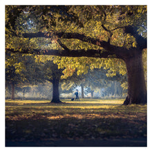Load image into Gallery viewer, HYDE PARK WALK