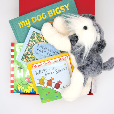 Baby Book Club Hamper including 5 classic children's books and Nana huchy Neddy Teddy