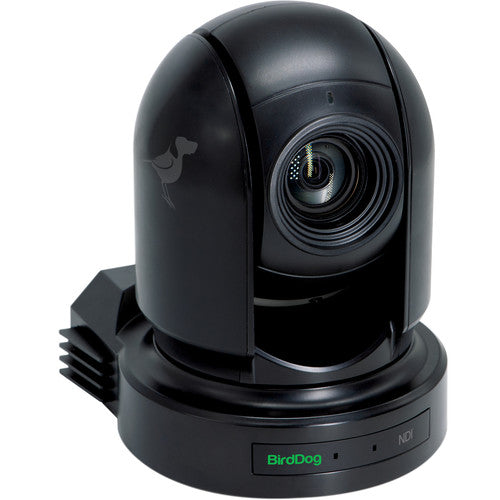 BIRDDOG BDP200B Eyes P200 1080p Full NDI PTZ Camera (Black)