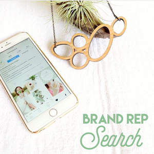 Brand rep search