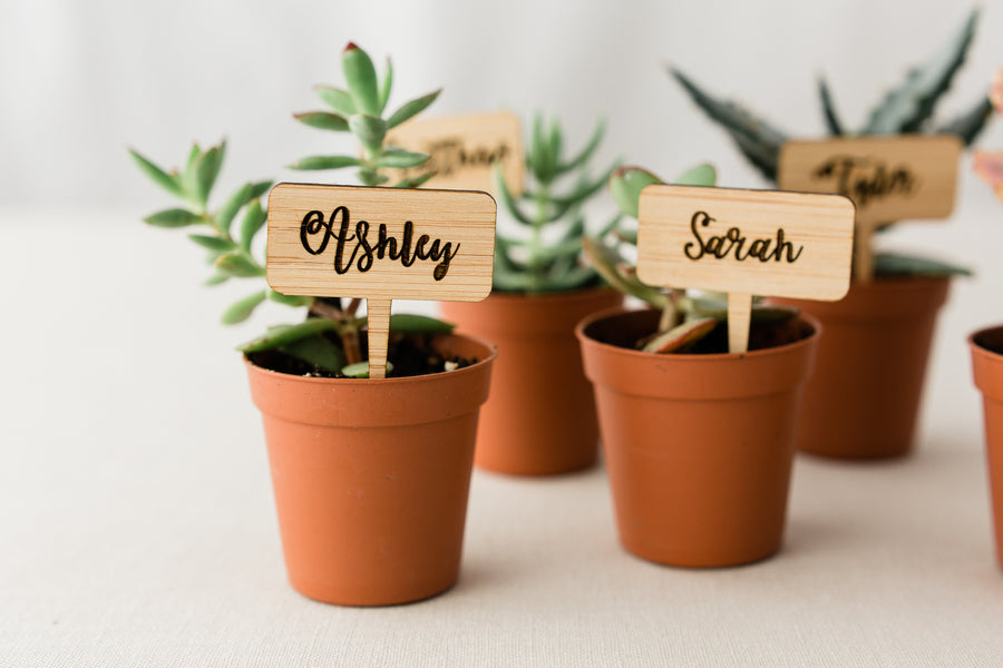 Plant name tags