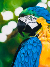 Load image into Gallery viewer, Parrot