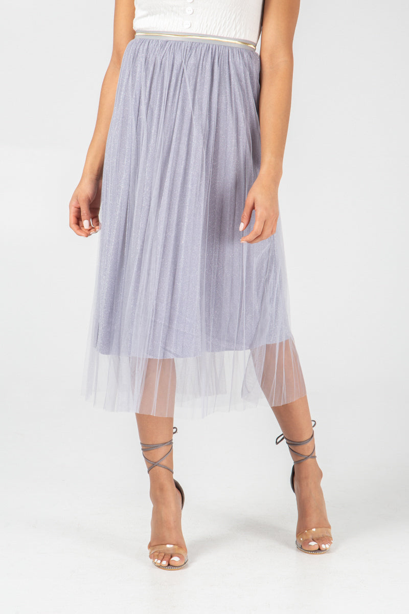 Net Metallic Midi Skirt