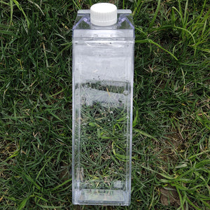 Milk Carton Water Bottle
