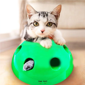 Premium Peek-A-Boo Cat Toy