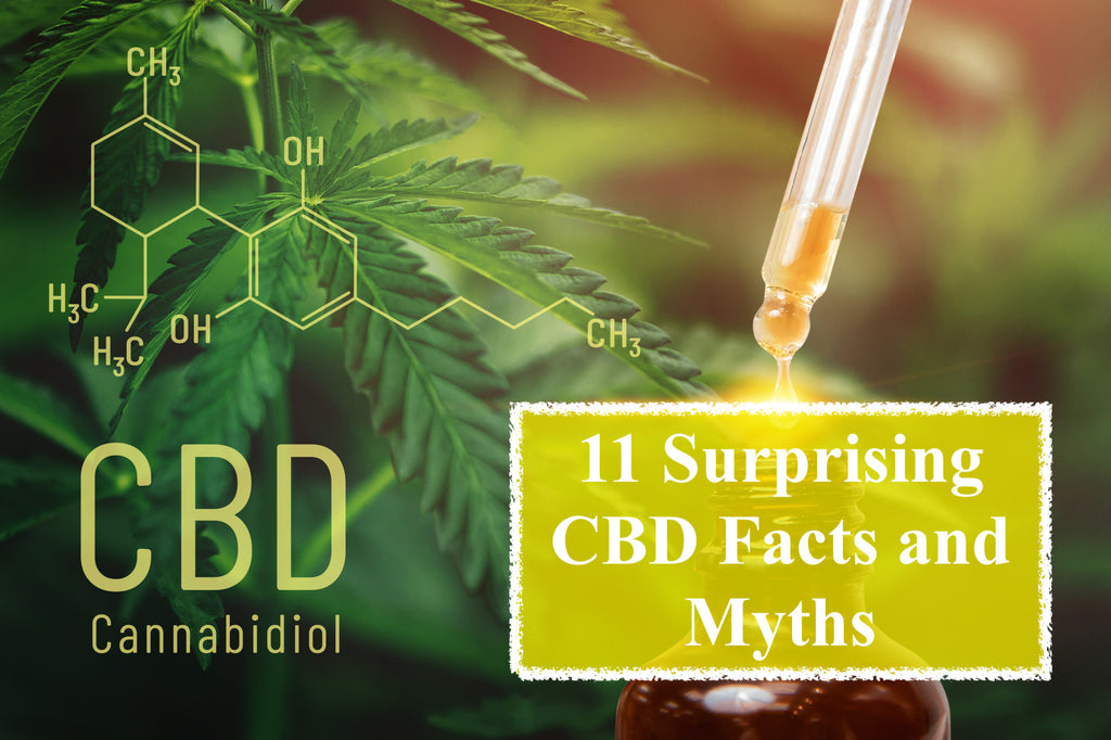 11 Surprising Facts and Myths About CBD