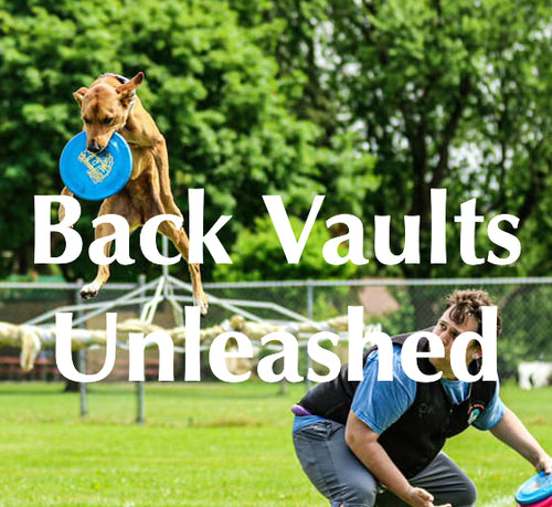 Back Vaults Unleashed Online Course
