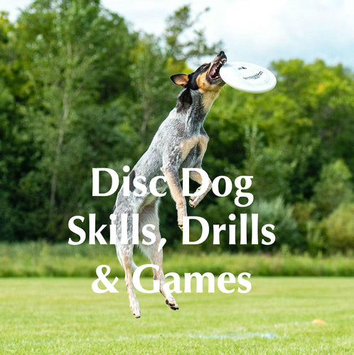 *Intro to Disc Dog* Skills, Drills & Games Online Course