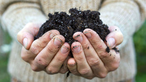 Sustaining Our Soil