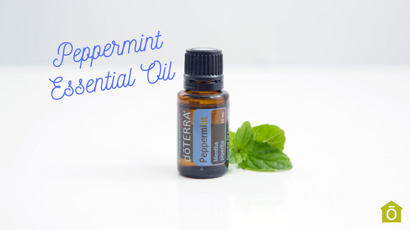 20 Very Useful Ways to Use Peppermint Oil - doTERRA
