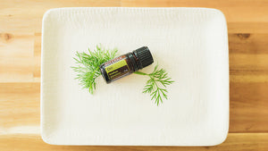 Uses and Benefits of Dill Essential Oil
