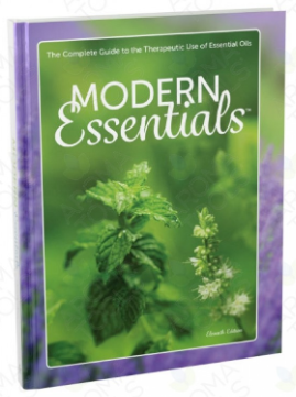 Modern Essentials Guide