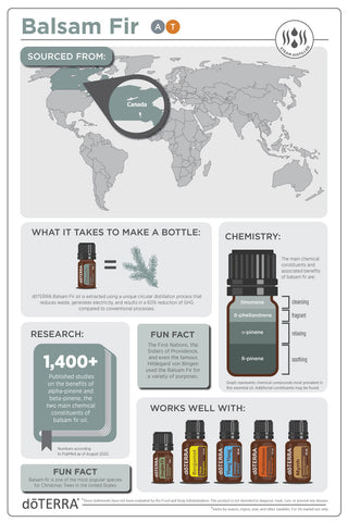 How to use doTERRA Balsam Fir Essential Oil Infographic