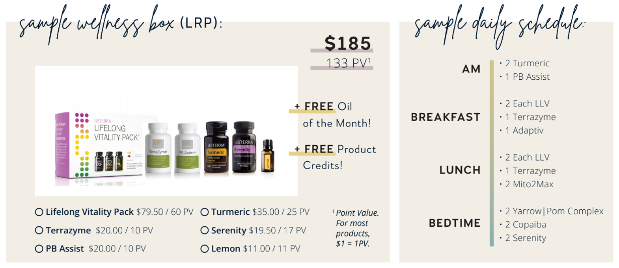 Sample Daily Schedule and Wellness box