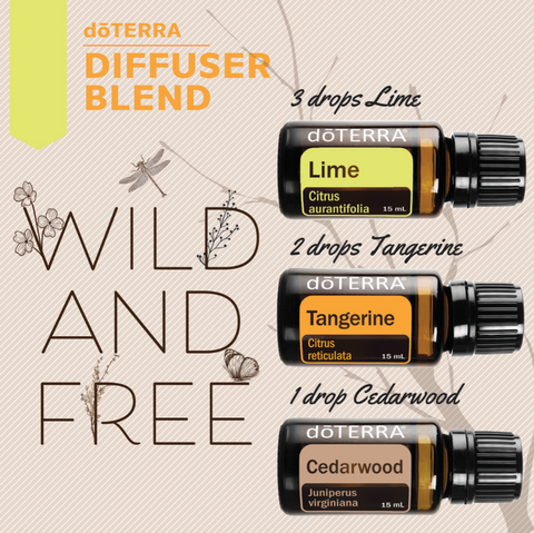 Wild and Free Diffuser Blend
