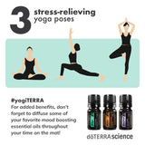 doTERRA Yoga Collection Infographic