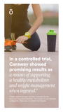 doTERRA Caraway Essential Oil