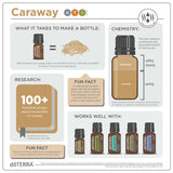 doTERRA Caraway Essential Oil Infographic