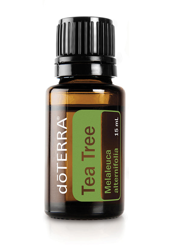 doTERRA Tea Tree (Melaleuca) Essential Oil - doTERRA