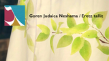 Neshamah/Eretz tallit video
