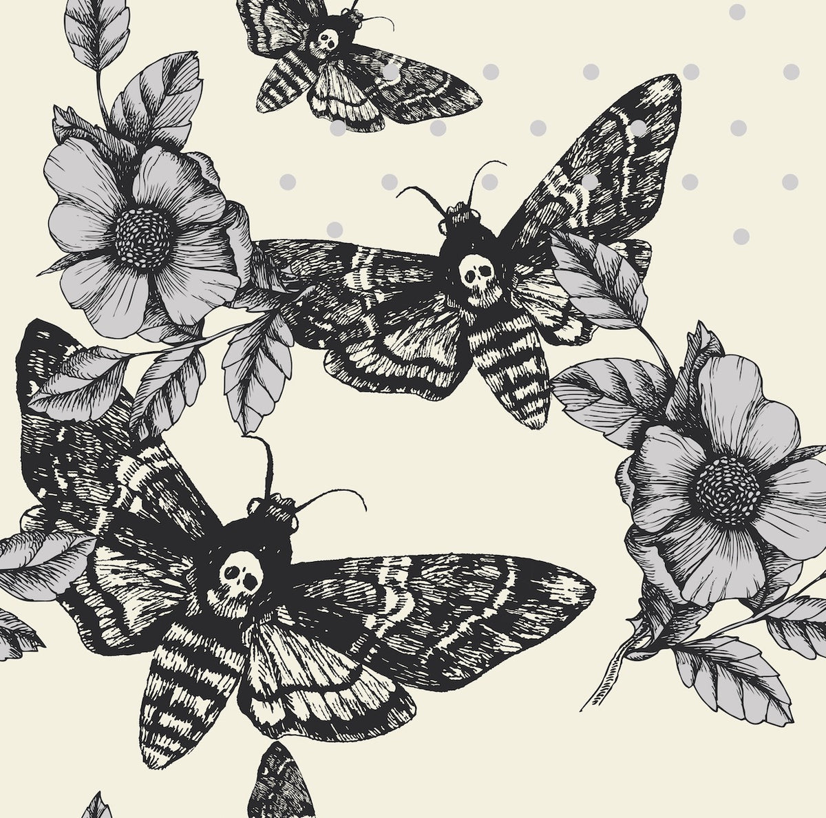 Butterflies, Death Moth & Entomology