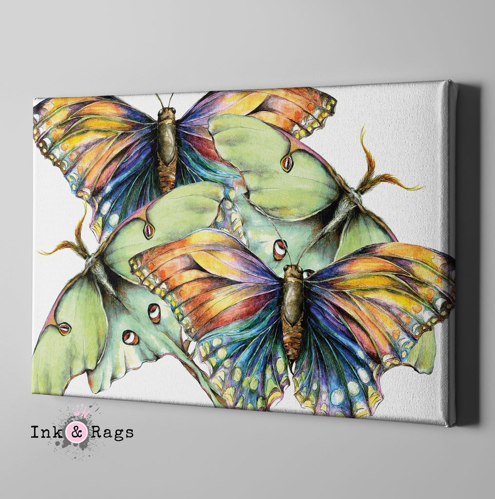 Butterfly and Luna Moth Watercolor Gallery Wrapped Canvas