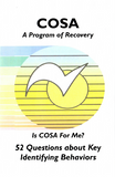 A Program of Recovery / 52 Questions