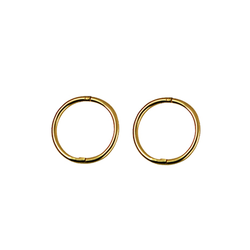 9ct Yellow Gold Small Plain Sleepers