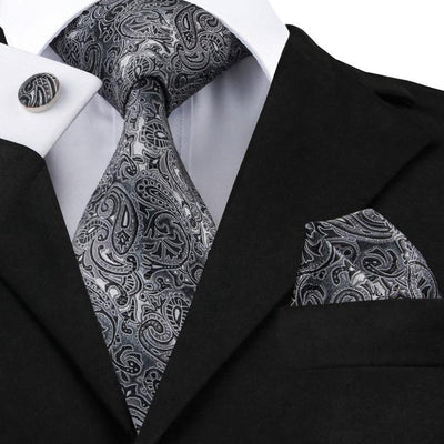 DapperTime Silver Paisley Tie, Pocket Square and Cufflink Set