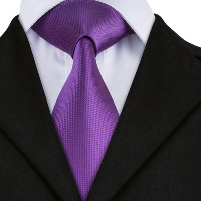 DapperTime Purple Silk Tie Front