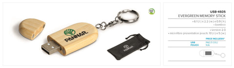 Evergreen Memory Stick Corporate gifts