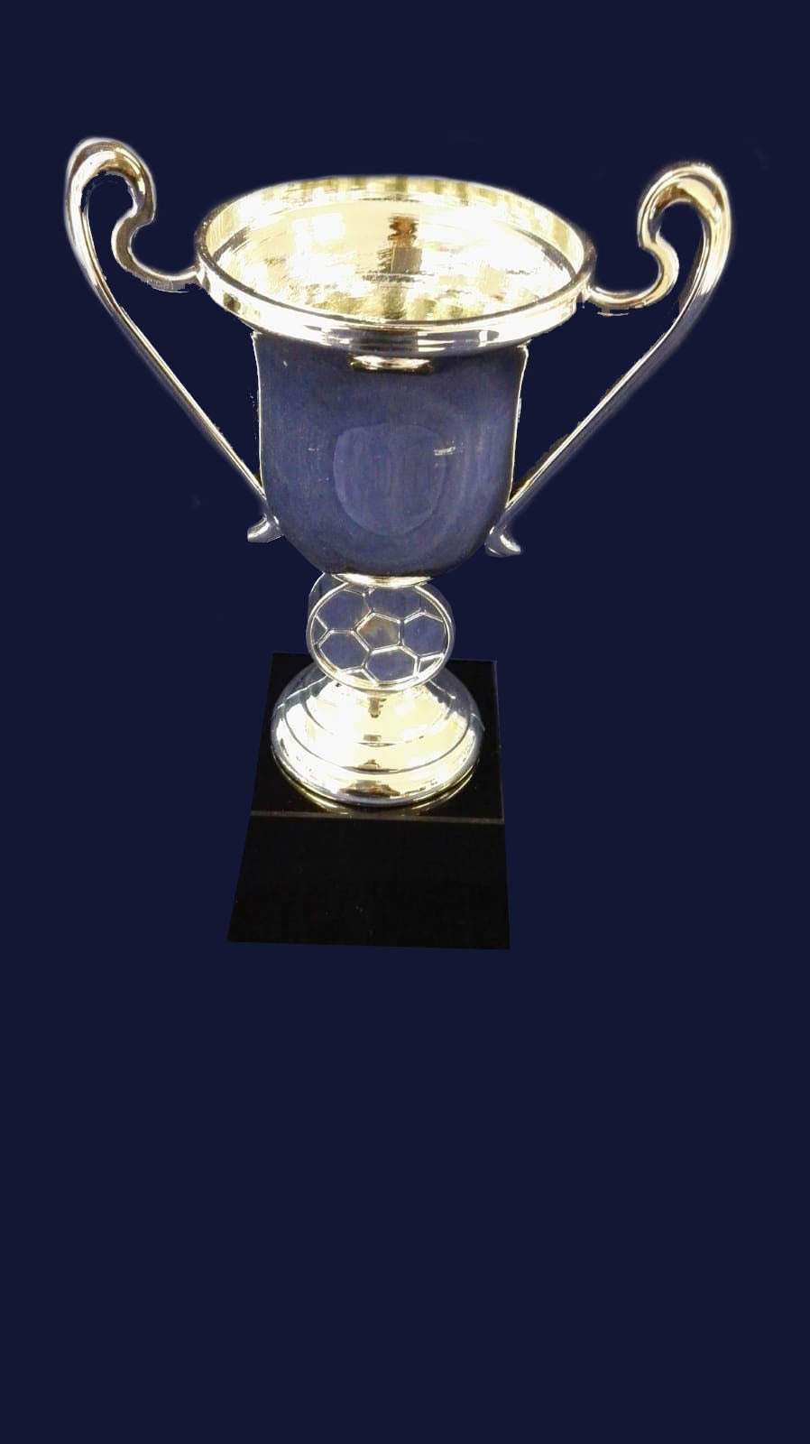 F94 CUP SILVER