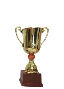 T142 Small Plastic Trophy