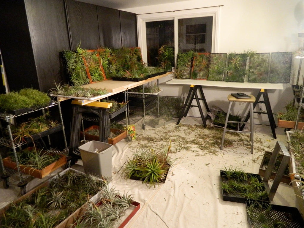 Late nights in Airplantman Studio